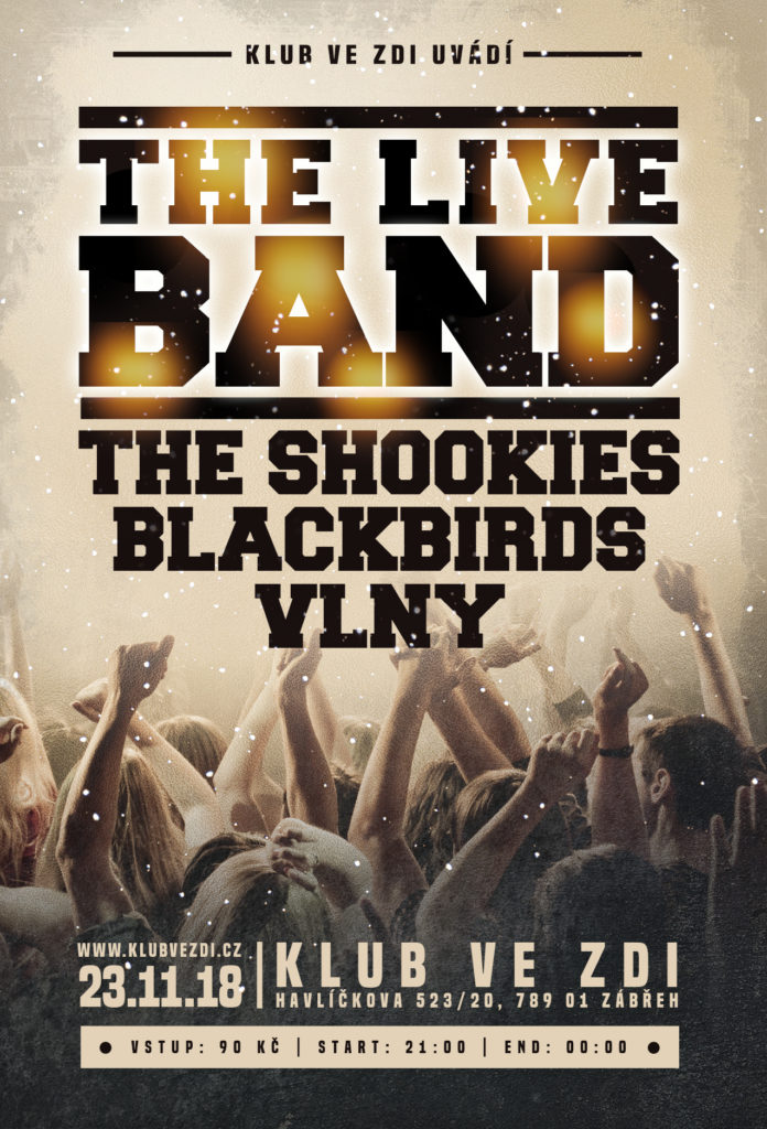 2018-11-23-the-shookies-blackbirds-vlny