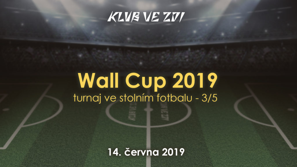06-14-fotbalek-cup-2019-3